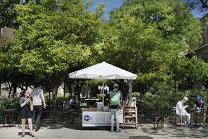 7a-edicio-de-l-activitat-Llegim-al-jardi-als-Jardins-Rubio-i-Lluch_large