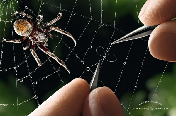 a-lange-soehne-watches-spiders-web-small-19784