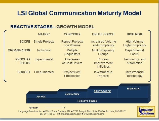LSP Maturity Ideal Customer Profile Language Solutions Inc - customer profile