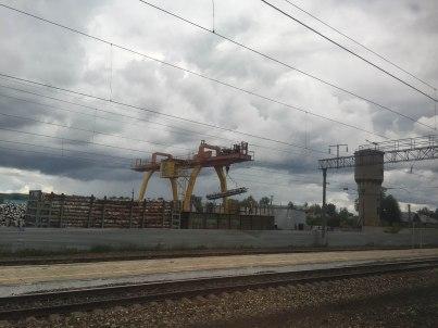 træ er en af ruslands vigtigste eksportvarer