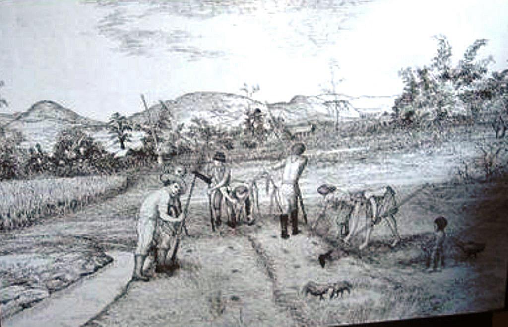 Contoh Laporan Diskusi Pelajaran Bahasa Indonesia Di Jari Kamu Tibanya Para Buangan Para Buangan Bertani Untuk Memberi Contoh