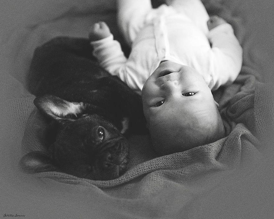 Wallpaper Baby Girl And Boy Nacidos El Mismo D 237 A Este Beb 233 Y Su Bulldog Creen Que Son
