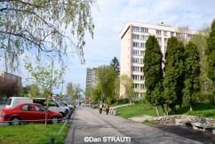 Brasov_copyright_Dan_STRAUTI (5) (Copy)