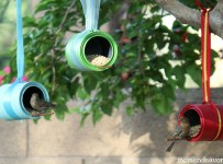 Birds-on-DIY-Bird-Feeders1-1024x616