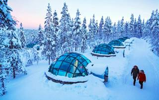 Lapland-day-trips