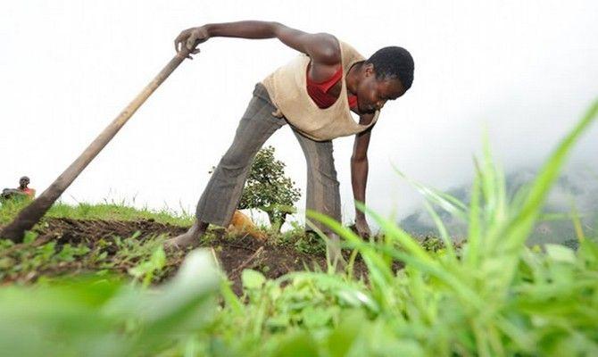 7-comercio-justo-oxfam