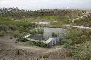 This work in progress is what will serve as a storm water basin, and a habitat where all sorts of wildlife can be spotted. (Photo by Niko LaBarbera)