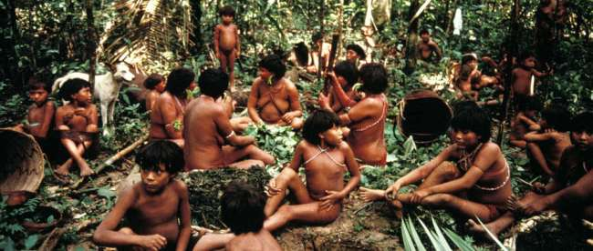 Nativos yanomami. Foto: Survival International