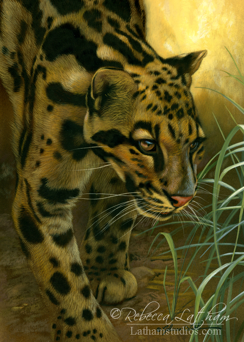 Leopard, 6in x 8in, opaque and transparent watercolor with sterling silver and 24kt gold on board, ©Rebecca Latham