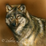 Spectator - Wolf, 5in x 7in, opaque and transparent watercolor with sterling silver on board, ©Rebecca Latham