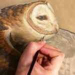 A part of a raptor collection by Rebecca Latham in progress for exhibition in the Middle East with Mandala Fine Art