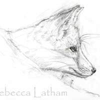 Sketches - Red Fox Kit Miniature Commission