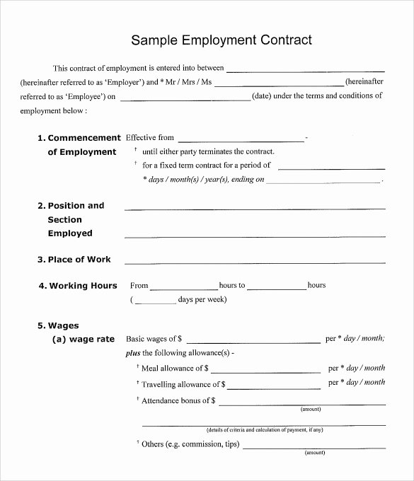 Free Employee Contracts Template Latter Example Template