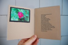 Livro Soma 2