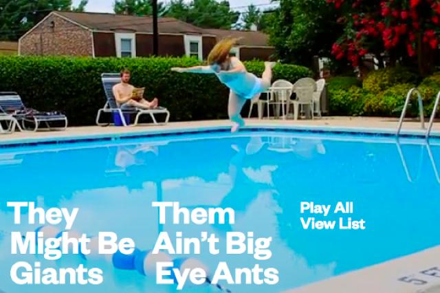 Them Ain't Big Eye Ants