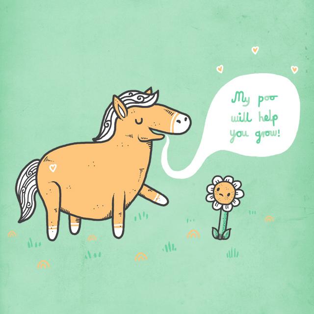 Horse Poo