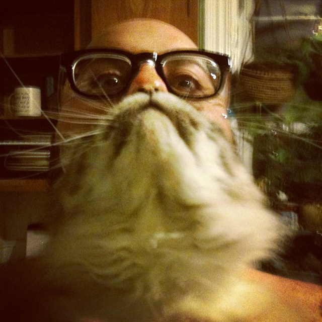 Cat Beard by Cee Please