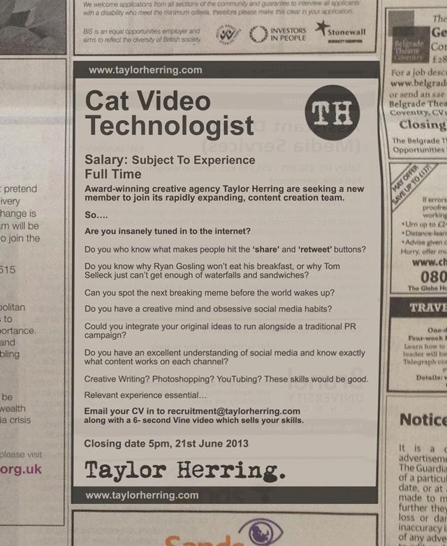 Cat Video Technologist job listing