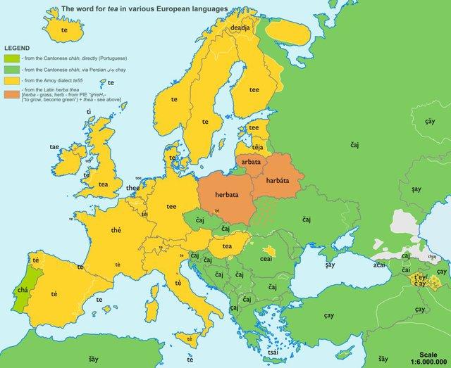 European Etymology