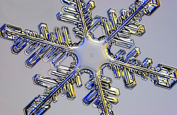 Snowflake Research Photos