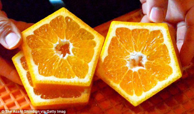 Pentagonal Shaped Fruit Cut Open