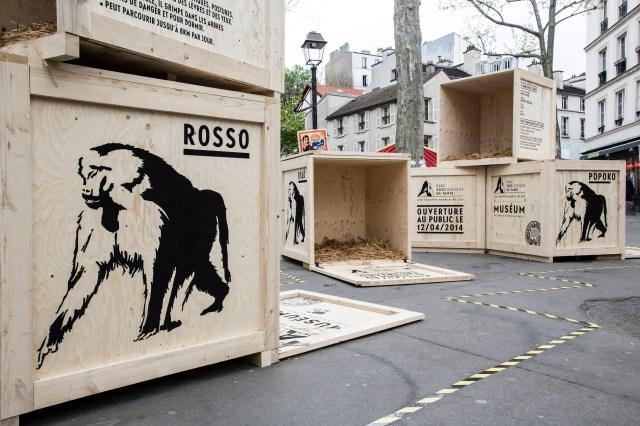 Zoo Animal Crates Stunt