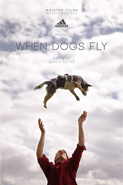 When Dogs Fly