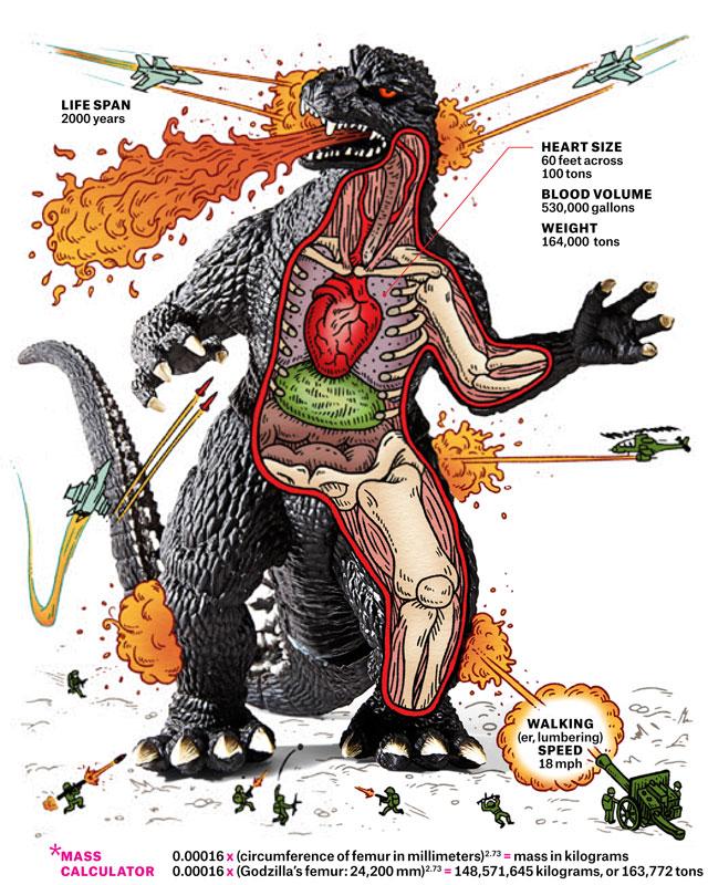 The Impossible Anatomy of Godzilla