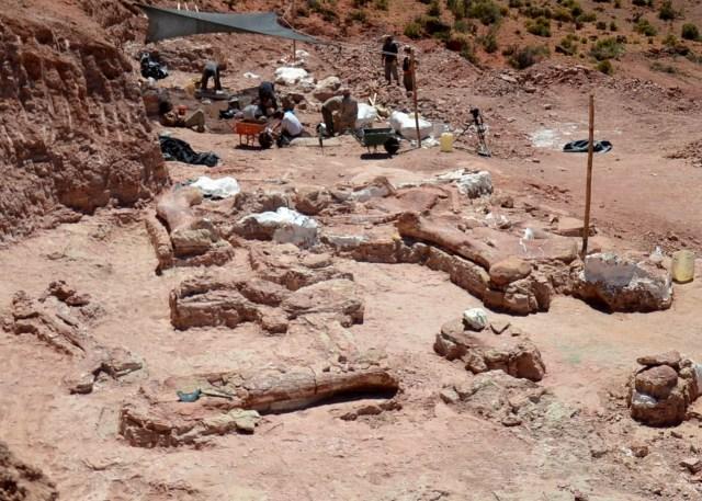 Titanosaur Dinosaur Bones