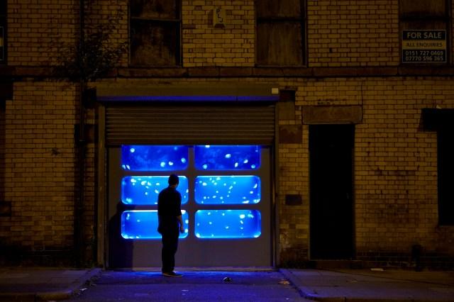 Jellyfish Tank Installation in Liverpool