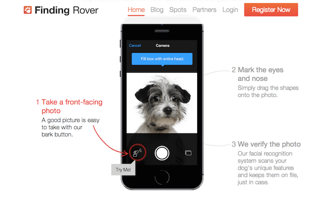Finding Rover Instructions