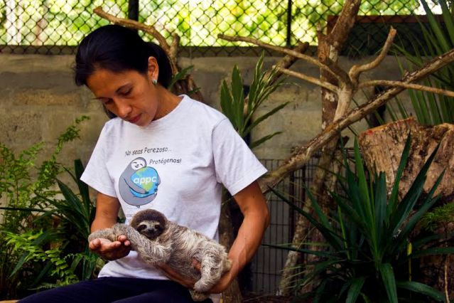 Yiscel with Baby Sloth