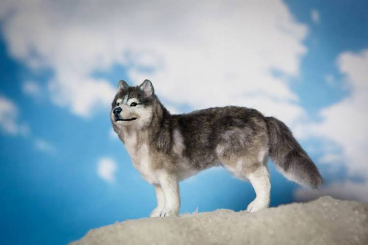 Felted Animal Sculptures by Heart Felt Canines