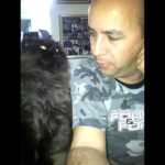 Gorgeous Black Persian Cat Shows His Human the Best Way To Pet Him