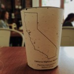 A Biodegradable Coffee Cup With Embedded Seeds That Grow Into a Tree When Planted