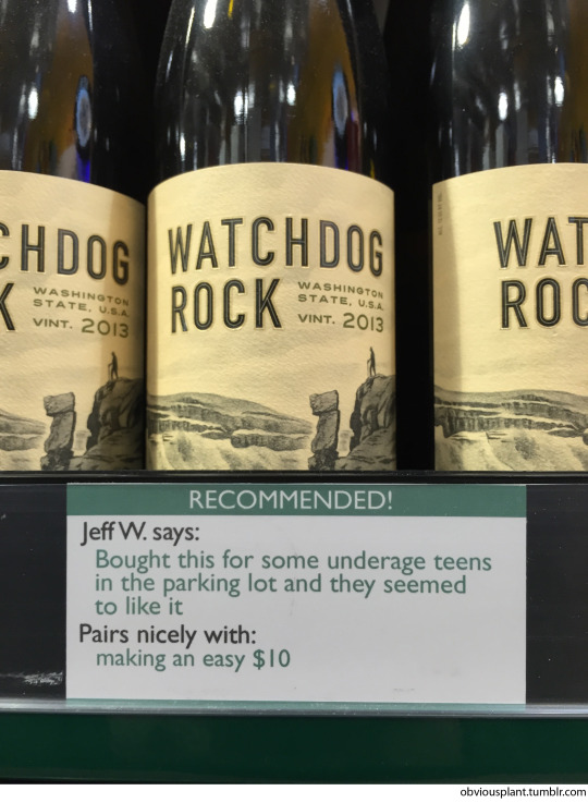Obvious Plant Wine Picks
