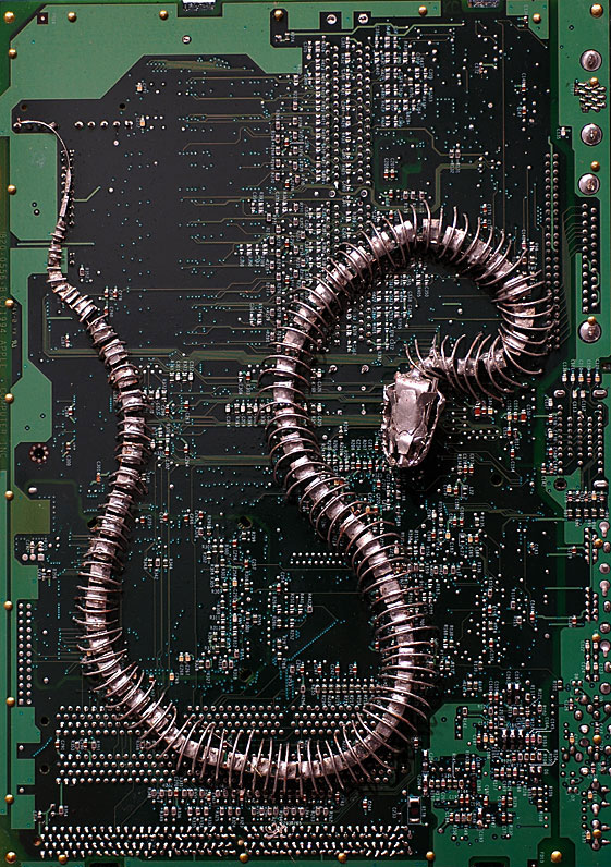 Recycled circuit board art by Peter McFarlane
