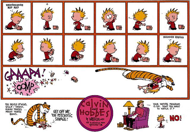 Calvin and Hobbes Comic