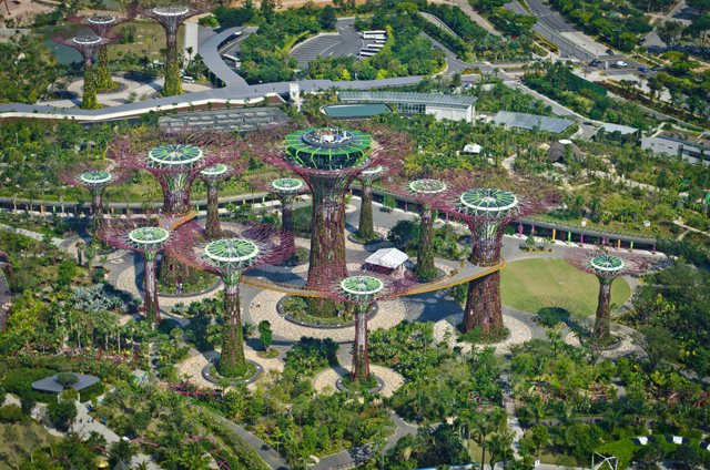 Supertrees aerial