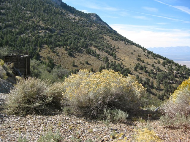 View from Long Now's property on Mount Washington in Nevada