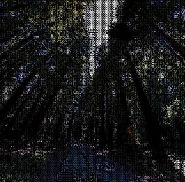 ASCII Google Street View