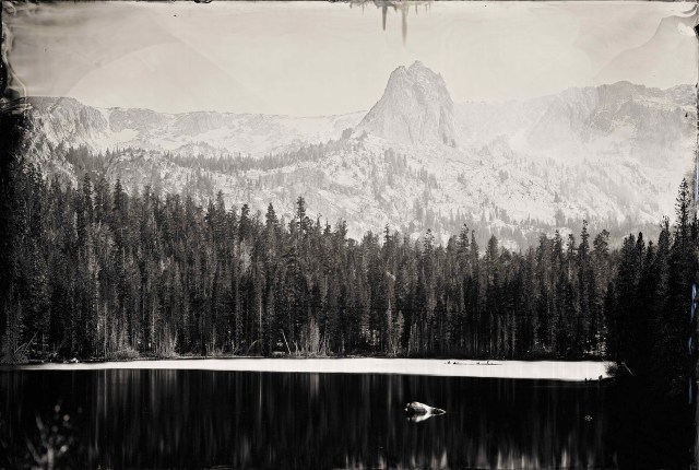 """Ian Ruhter/ Wet Plate Collodion 24""""x36""""/Narcissus /Mammoth Lakes CA /10.15.2011"""