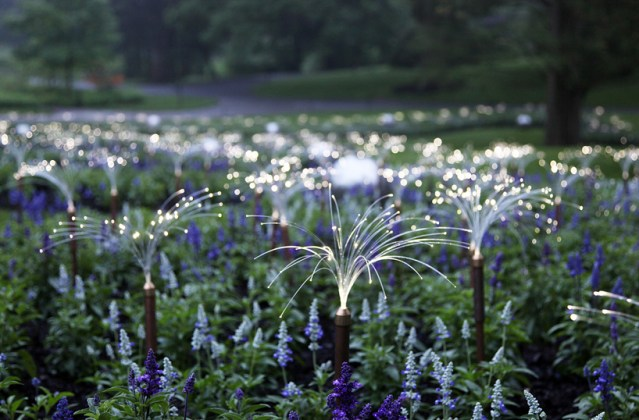 Light, Installations by Bruce Munro at Longwood Gardens