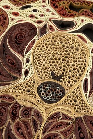 Tissue Series by Lisa Nilsson