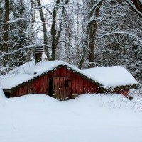 45 Cures for Cabin Fever