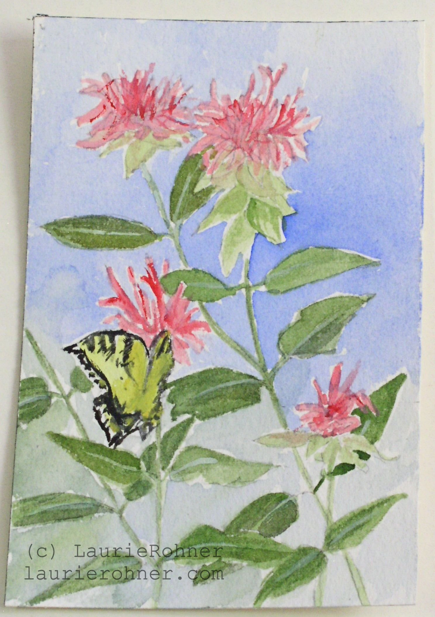 Botanic Soldes Sold Pink Garden Flower Butterfly Watercolor Original