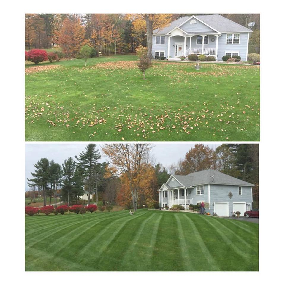 Backyard Clean Up Fall Cleanup Lawn Envy