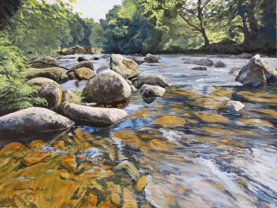 Granite Boulders, East Dart River by Lawrence Dyer