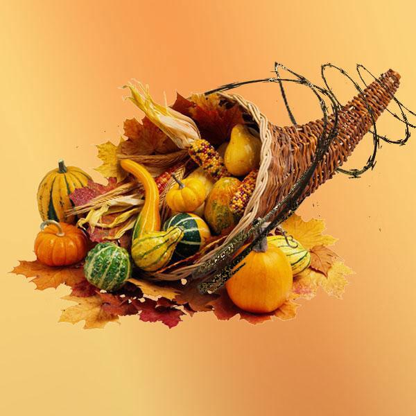 112615DRC-Thanksgiving-cornucopia-suffering