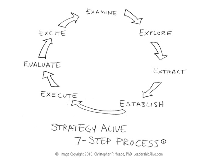 Strategy Alive™ - A 7-Step Strategic Map To Success - LeadershipAlive - how do you evaluate success